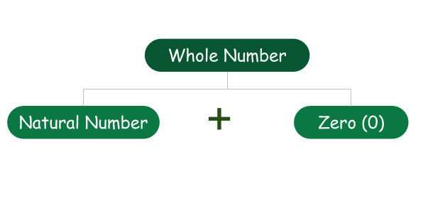 Whole Numbers Definition, Property, Example Part-2